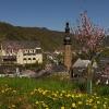Blick auf Cochemer Altstadt 1